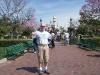 Absinthe at Disneyland