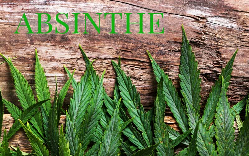 Absinthism and the comparison of Absinthe to Cannabis