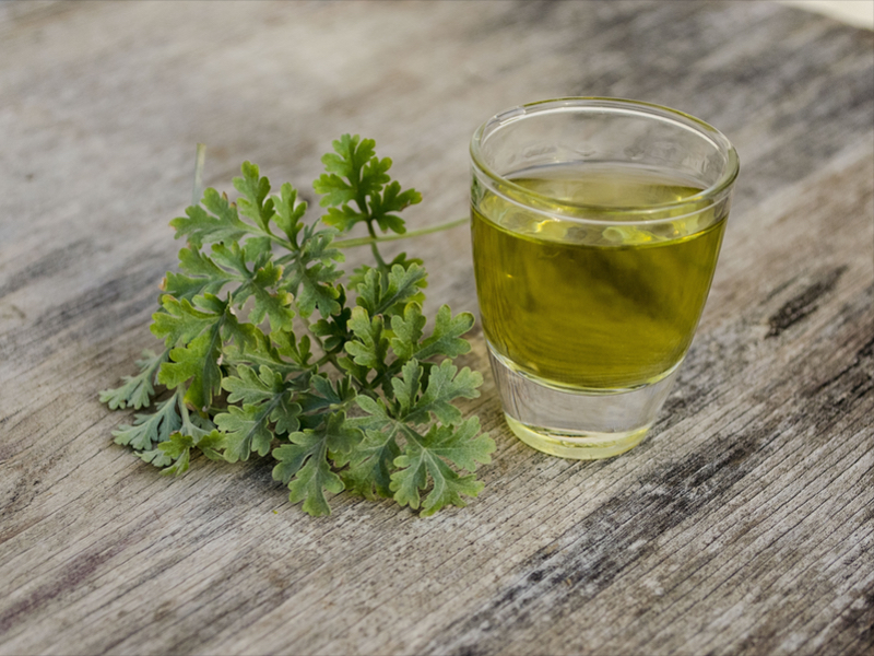 Absinthe and its image in countries