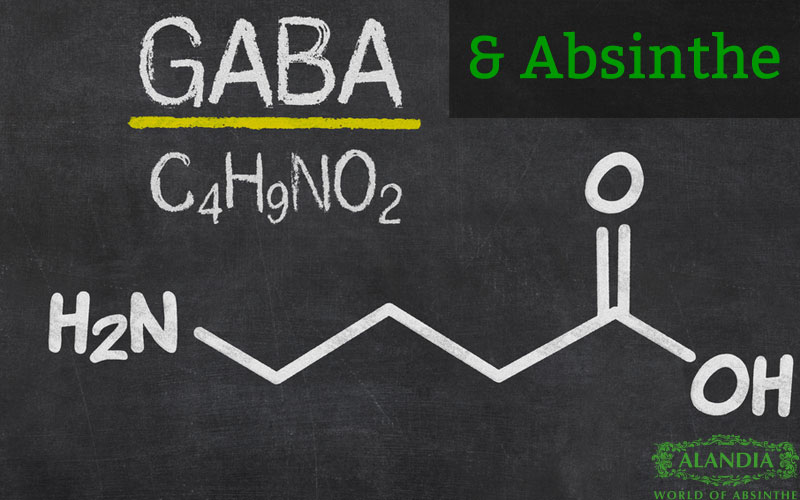 GABA: What does it have to do with Absinthe & Thujone?
