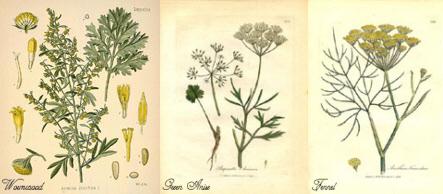 Absinthe Herbs
